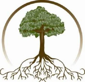 Roots Club: Genealogy and Research Learning @ Different branches of the Campbell County Public Library System