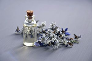Essential Oils: Clean Home - Timbrook @ Timbrook Library