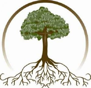 graphic of tree with spreading roots