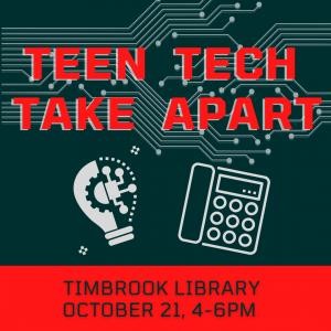 Teen Tech Take Apart - Timbrook @ Timbrook Library